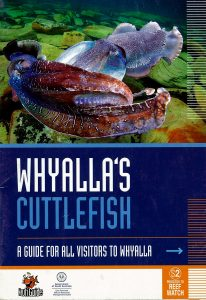 Whyalla's Cuttlefish - A guide for All Visitors to Whyalla I Reef Watch